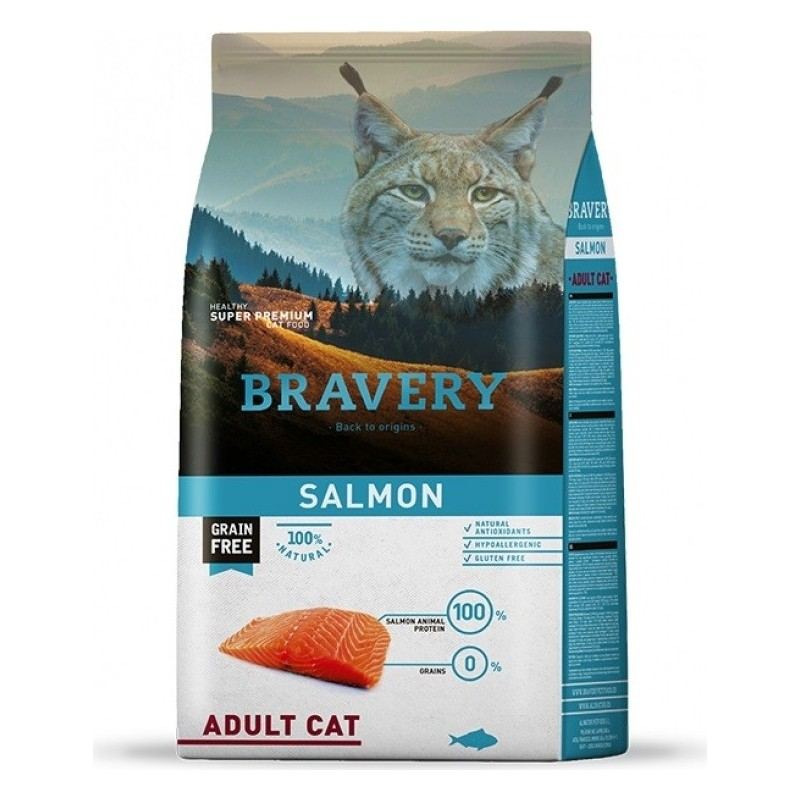 bravery chat adulte